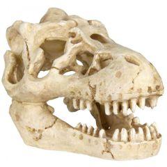 Assorterte Dekor kranie 4,5-6,5cm