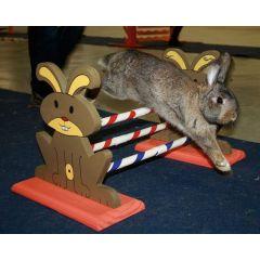 Kanin over hinder