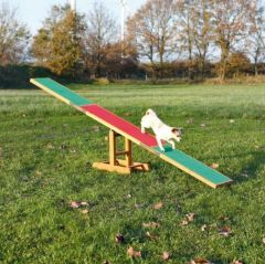 Agility Vippe For Hund 300 cm