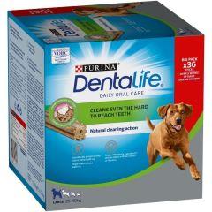 Dentalife Big Pack Large 36stk