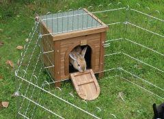 Hus kanin & smådyr