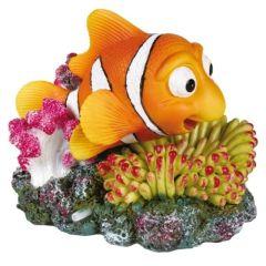 Klovnefisk med korall & luftinntak