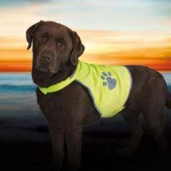 Sikkerhetsvest hund refleks