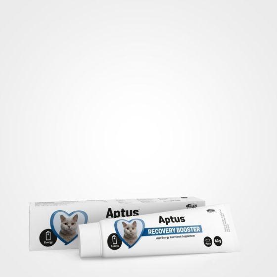 Aptus Recovery Booster Katt 60g