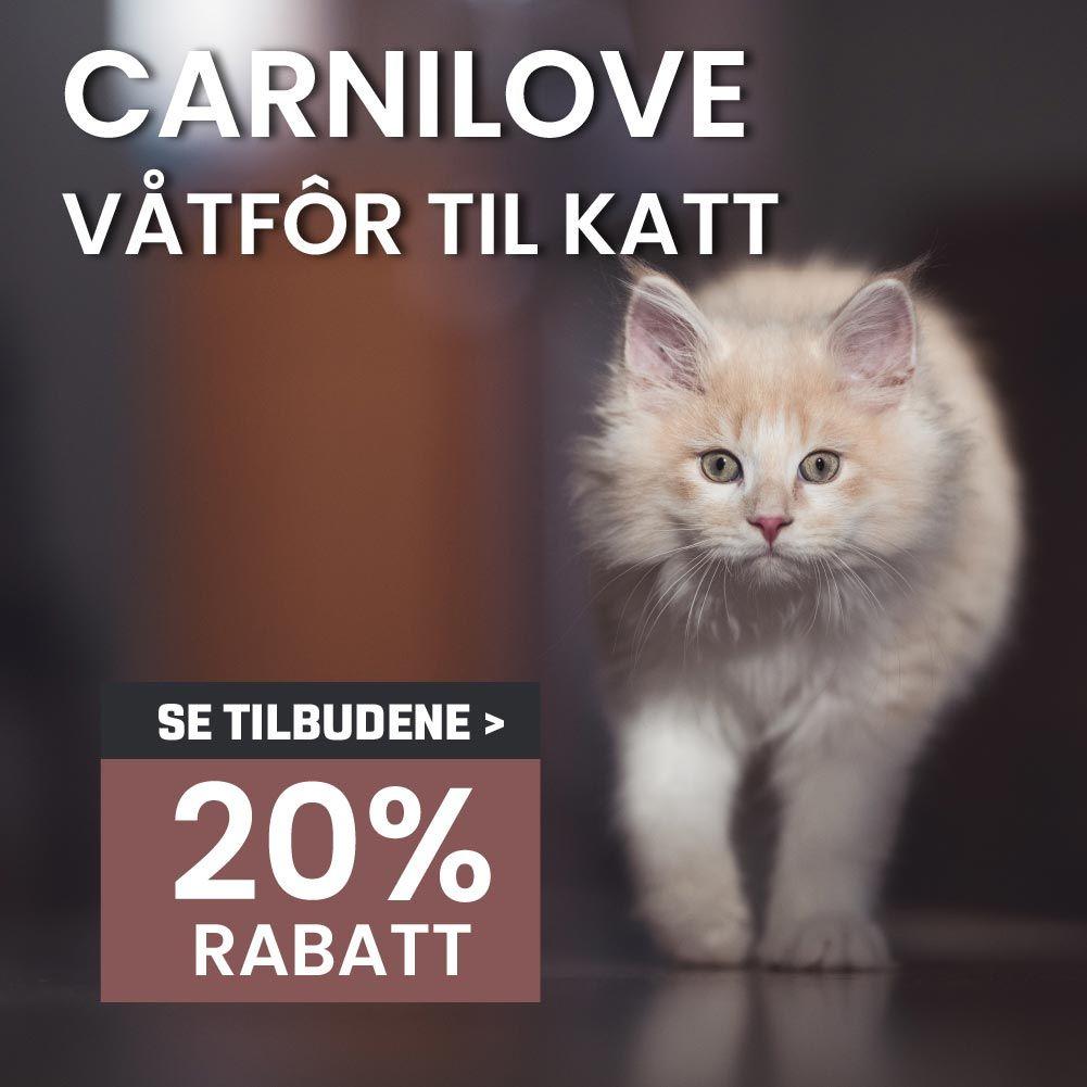 Carnilove våtfor til katt