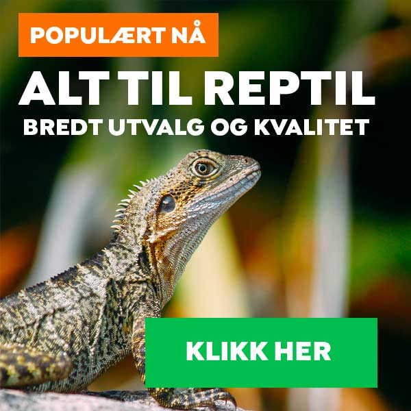 Reptil petworld
